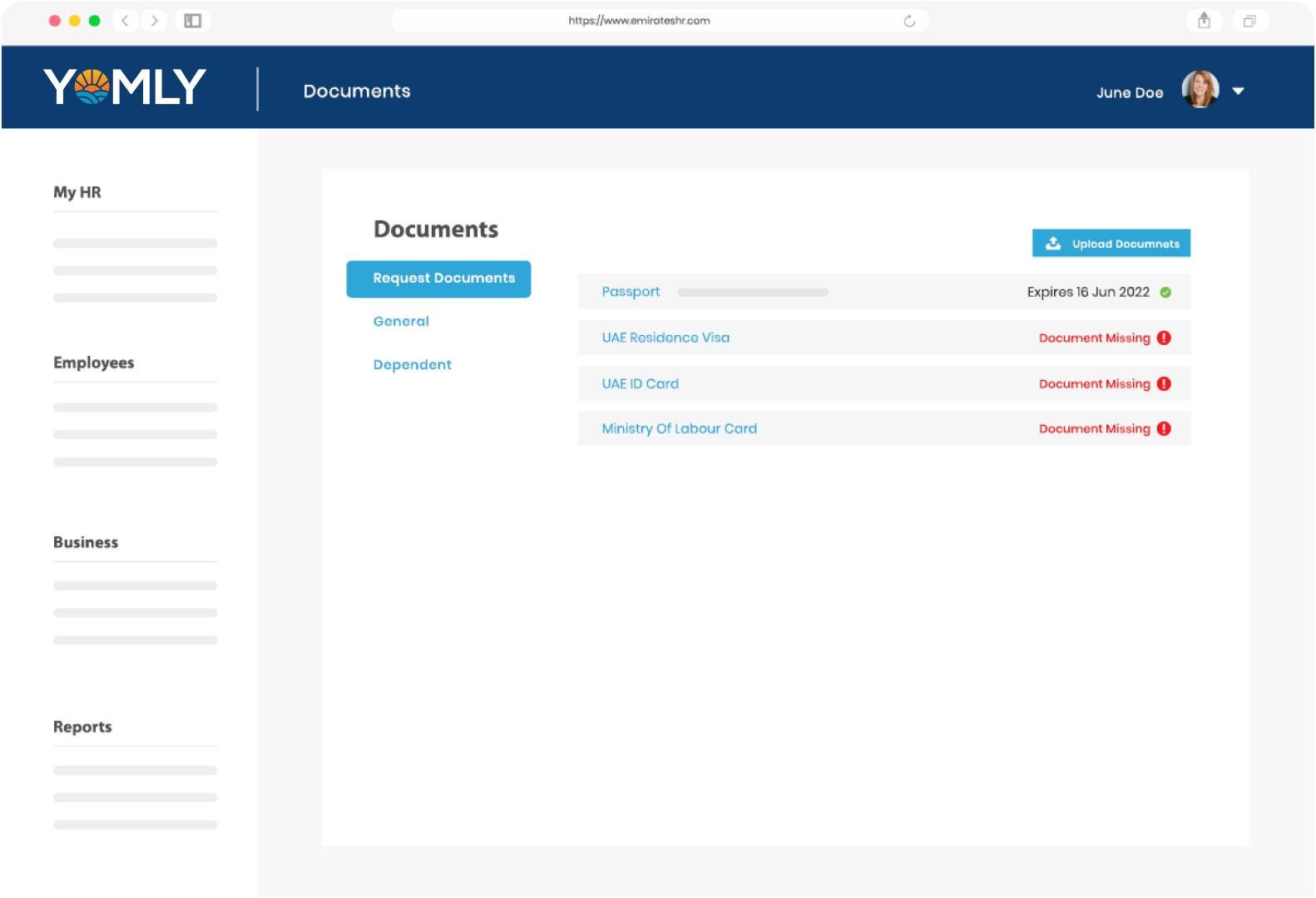 Documents-Requests-Dashboard (Large)